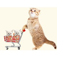 Wholesale Funny Pet Toys Supermarket Shopping Intelligence Cart for birds Parrot toy bird Kids Growth Box red yellow hotpink