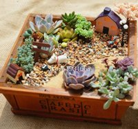 Wholesale Zakka Succulent plants wood flowerpot cactus bonsai flower pot trays storage box home Desktop decoration microlandschaft