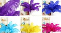 Wholesale 150PCS high quality mix colour ostrich feather cm quot ostrich feathers big wedding DIY