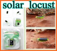 Wholesale Novel Solar Toy Solar Power Robot Insect Bug Locust Green Grasshopper Toy kid with legs