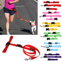 luxury pet products - 2 CM Dog Lead Running Dog Leash rope Collar Rubber All Seasons Luxury Puppy Brand Pet Products for Travel Dog Collar