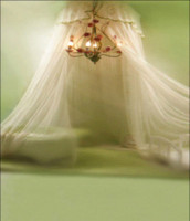 Wholesale White Mosquito Net Chandelier Children Baby One Hundred Days Photography Bedroom Decor Backgrounds x7ft Studio Vinyl Backdrops