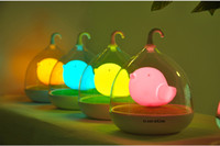 Wholesale LED Energy saving Creative Birdcage Night Lights Toys Gift Smart Touch Dimmer Fluorescent Table Lamp Portable Mini USB Light Eye Protection
