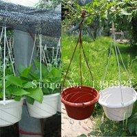 Wholesale Hot Sale Gardening Chlorophytum Planter Plastic Home Garden Decor Hanging Spider Plant Flower Pots Bonsai