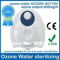Wholesale ozone generator air purifier sterilizer water air ozonator ionizator ozonizer v v optional ozone purifier mg A3
