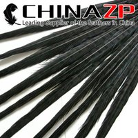 Wholesale CHINAZP Crafts Factory cm inch Length Selected Top Quality Dyed Black Natural Ringneck Pheasant Tail Feathers
