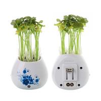 Wholesale UK EU US Anself Mini Potting Air Purifier Freshener Practical Charger With Colorful Night Light USB Port Desktop Decoration order lt no trac
