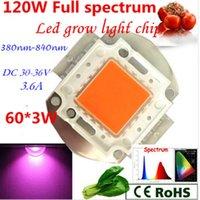 Wholesale pcb Full Spectrum led grow lights cob W w w chip led grow light for diy led plant grow ligh nm grow light