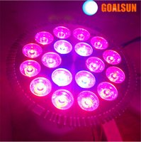 Wholesale Led Plant light W E27 Led Hydroponic Plant Flowers Vegatables Green Led Grow Lights Plant Growing Lamp Infrared nm