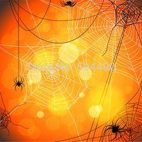 backgrounds web - 5X7ft vinyl backdrop photography background spider web backdrop D