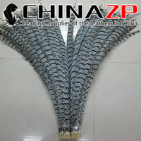 Wholesale CHINAZP Factory Exporting cm inch Top Quality Long Natural ZEBRA Lady Amherst Pheasant Tail Feathers