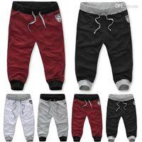 Wholesale 2015 Autumn Summer Sport Harem Pants Bull Embroidery Hip Pop Sweatpants Casual Capri Pants For Men Drop Shipping US XS XL Sizes