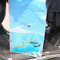 Wholesale Electric car sunscreen UV leg shield battery car insulation Sunshield visor cm