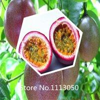 beautiful fruit - New Arrival Passiflora incarnata Maypop bag Beautiful Passion Vine Fruit Flower Seeds