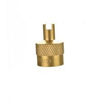 Wholesale 5 bag Hot Metal Slotted Head Working Vehicle Valve Stem Caps With Core Remover Tool