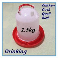 chicken feed - 1 kg of water Chicken water bowls Duck drinking cup Quail kettle Bird Drinking Feeders Poultry Feeding Devices