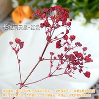 dried flowers - 20PCS Real dried Pressed Flowers For glass globe bottle stuffing glass bottle