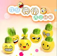 Семена цветущие Цены-Выражение QQ мини-заводов волшебная трава посадки бонсай зеленые растения в горшках подарок семена цветов 111g 6,5 см CYB58