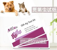 animal testing cats - GIA Canine Dog Feline Cat Giardiasis Ag One Step Rapid Test Kit For Pet Animal test pouch