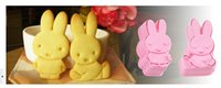Wholesale 2015 new D three dimensional cartoon biscuit mold DIY baking biscuit cake rice mold a variety of optional