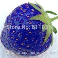 decorative fruit - Hot selling bag blue strawberry rare fruit vegetable seed bonsai plant home garden