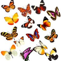 Wholesale 100PCS Three dimensional simulation of butterfly stickers fridge magnet car sticker