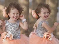 baby halloween pictures - Blush Silver Wedding Flower Girls Dresses Ball Gown Jewel Neck Zip Back Floor Length Tulle Cheap Baby Formal Party dresses