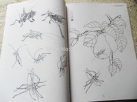 bee books - New Tattoo Books Insect Bee Cricket Dragonfly Flower Chinese Painting tattoo books Tattoo Sketchbook