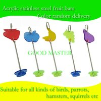 Wholesale NEW ARRIVAL Stainless steel fruit bar parrot fruit fork bird toys factory direct sale