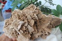 best pretty shoes - 300g BEST PRETTY NATURAL SELENITE GYPSUM DESERT ROSE