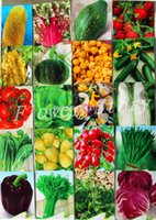 Wholesale A total of seed kinds of vegetables and fruits package sugar beet planting organic vegetable garden strawberry delicious