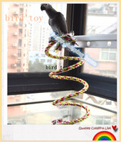 Wholesale Large and medium sized Parrot Bird Toy climbing rope toy Grey Parrot Macaw Parrot Toy