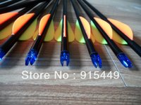 Wholesale 12pcs Hunting Arrows Glass Fiber Al Socket Pointed Screw Arrow fit COMPOUND bow