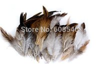 Wholesale 50Pcs mm Natural Decoration Rooster Cock Feather Ideal for Costumes Hats Home Decoration AE01091