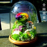 preserved flower - Imported roses never fade Colorful Flower preservation preserved flower giant glass Christmas gift the SF