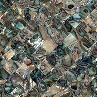 abalone tiles - Canossa natural abalone shell mosaic decorative material Continental tile puzzle backdrop Materials