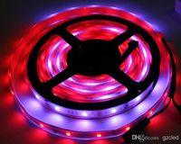 Wholesale new model Meter LED Strip Dream Color LPD8806 RGB SMD Magic Light M LED waterproof