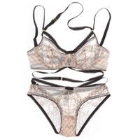 Wholesale Euramerican Intimates transparent sexy bra set plus size Women gauze ultra thin underwear set lace hollow out bra and Panty Set