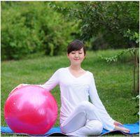 Wholesale Hot Sale cm Stability Exercise Yoga Gym Fitness Ball Anti Burst Exercise Ball