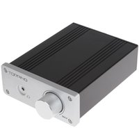 Wholesale Topping TP21 TA2021 Class T Digital Car Mini Amplifier Power Amp Audio for Subwoofer with Audiophile Quality Sound