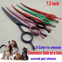 Wholesale Best Promotion inches Stainless Steel Pet Grooming Curved Blade Hair Scissors For Cat Dog High quality titanium shears to Barber Gift