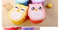 Wholesale drop shipping new Microwave Bento box Cartoon cute owl Japan jogo de panelas Bento Lunch meal box tableware Easy Open microwave oven