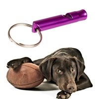 Wholesale Hot Sale Keychain Training Obedience Whistle Ultrasonic Flute Supersonic Sound Random Color Pet Dog PET