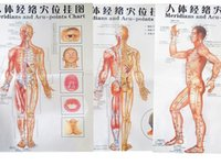 acupuncture meridians chart - 2015 color body acupuncture points chart Meridian points chart meridian chart three side front back chinese En