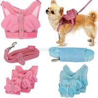 Wholesale Hot Pet Dog Cat Adjustable Angel Wing Safety Harness Lead Leash Pink Blue Size