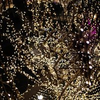 Wholesale Wonderful White Solar Power LED String Fairy Light Outdoor For Christmas Party
