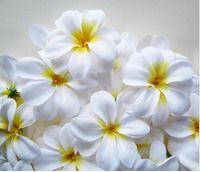 Wholesale 30 off new Table Decorations Hawaiian Plumeria Frangipani Artificial Silk Flower Heads white flower