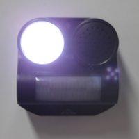 motion activated sound - Home Garden PIR Motion Light Sensor Activated Ultrasonic Gunshot Sound and Flashlight Bird Bat Pest Animal Repeller H15176