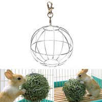 Wholesale 1pc Simple design Guinea Pig Hamster Rat Rabbit Feed Dispenser Ball Toy Sphere Treat Ball for Pet Products