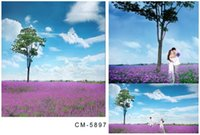 alfalfa flowers - 6 ft ft cm cm wedding background Alfalfa flower tree blue sky photo backdrops photography backdrops cm